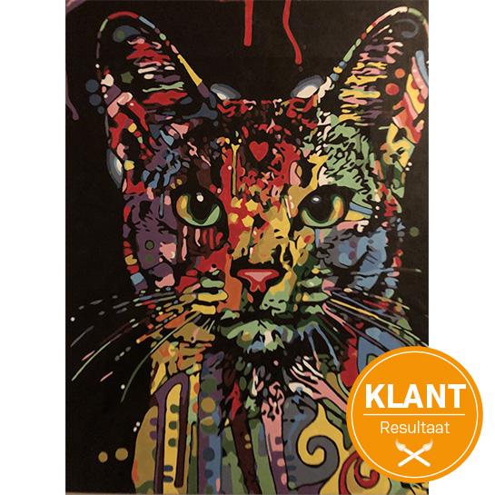 Gekleurde Kat Klantenresultaat