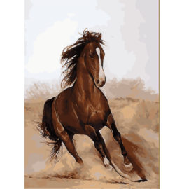 Briesend Paard Schilderen Op Nummers