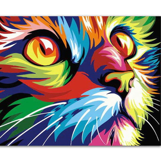 Colourful Cat