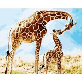 Giraffe Met Baby Giraffe