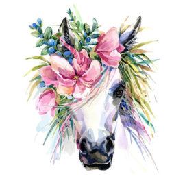 Paard Met Bloemen