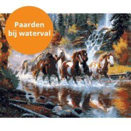 Paarden Bij Waterval