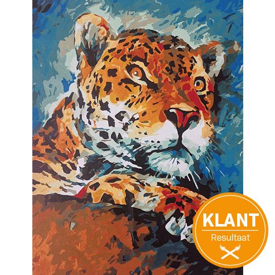 Klanten Resultaat Jaguar