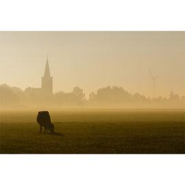 Burgwert In De Mist