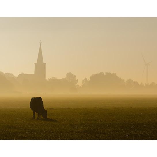 Burgwert In De Mist V2