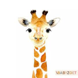 Giraf Babyzoet