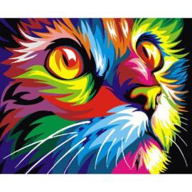 Colourful Cat Schilderen Op Nummers