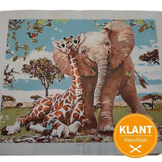 Klant Resultaat Olifant En Giraf 2