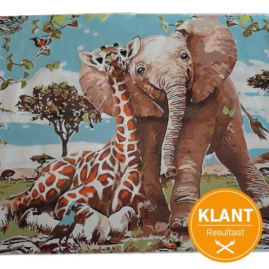 Klanten Resultaat Olifant En Giraf (1)