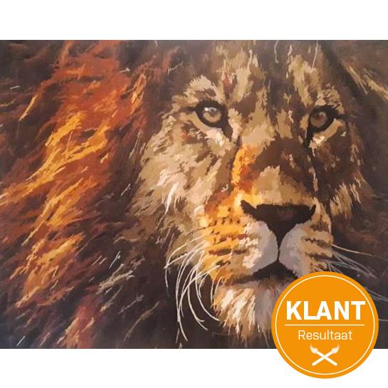 Klanten Resultaat Lion (2)